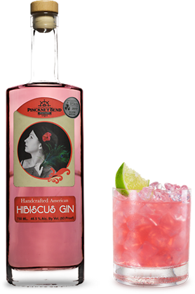 Hibiscus gin and cocktail